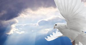 hemelvaartsdag-en-pinksteren
